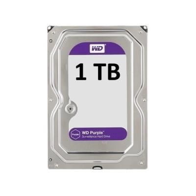 Kietasis diskas WD purple 1TB