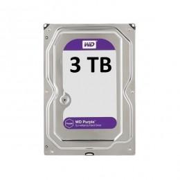 Kietasis diskas WD purple 3TB